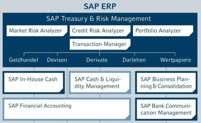 Treasury mit SAP